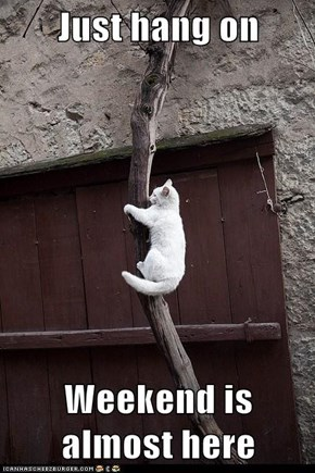 Just hang on  Weekend is almost here