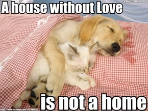 Goggies R Owr Friends: Home is Where the Heart Is