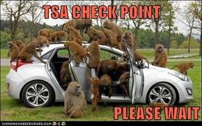 TSA CHECK POINT  PLEASE WAIT