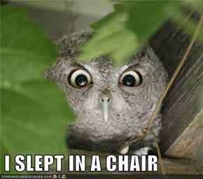 I SLEPT IN A CHAIR