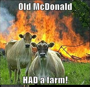Old McDonald  HAD a farm!
