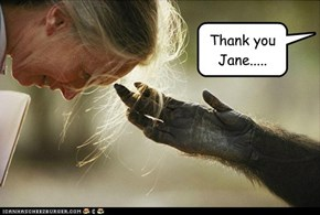 Thank you Jane.....
