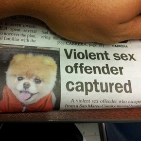 Glad They Got This Monster Behind Bars