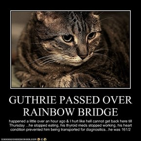 GUTHRIE PASSED OVER RAINBOW BRIDGE