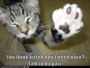 You think kitteh don't need para? Talk to da paw.