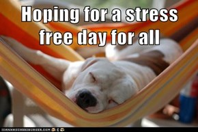 Hoping for a stress free day for all