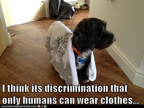 I think its discrimination that only humans can wear clothes...