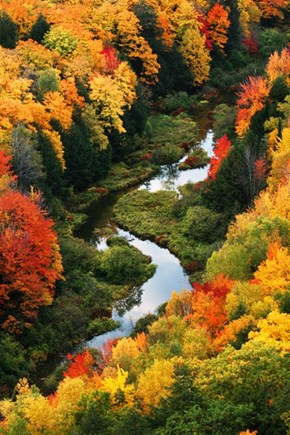A River Runs Through Fall