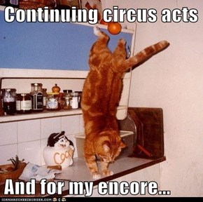 Continuing circus acts  And for my encore...