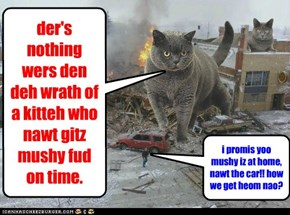 der's nothing wers den deh wrath of a kitteh who nawt gitz mushy fud on time.