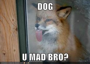 DOG  U MAD BRO?