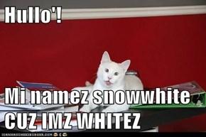 Hullo'!  Mi namez snowwhite CUZ IMZ WHITEZ