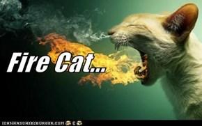 Fire Cat...