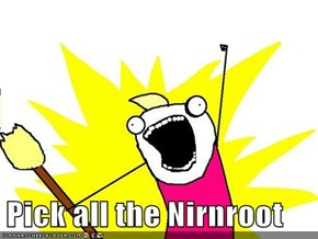 Pick all the Nirnroot