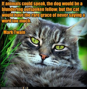 If animals could speak, the dog would be a blundering outspoken fellow; but the cat would have the rare grace of never saying a word too much.     Mark Twain