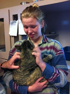 Cat Reunited With Owner After Missing for a Year