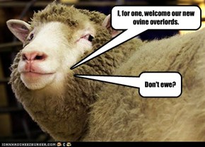 I, for one, welcome our new ovine overlords.