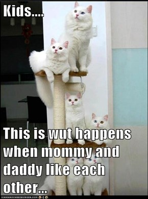 Kids....  This is wut happens when mommy and daddy like each other...