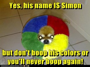 Yes, his name IS Simon  but don't boop his colors or you'll never boop again!