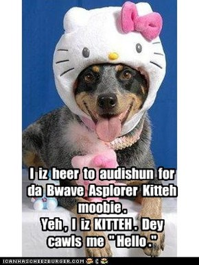 EBBRYWUN is auditioning for da Bwave Asplorer Kitteh moobie.