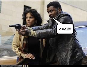 A RAT!!!!