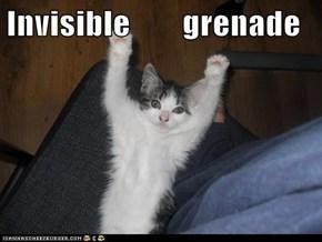 Invisible        grenade