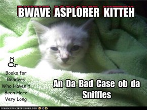 A new book in the Bwave Asplorer Kitteh series for the very youngest!