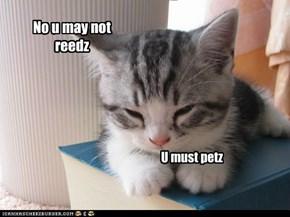 No u may not reedz