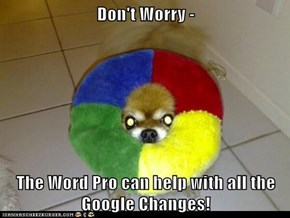 Don't Worry -  The Word Pro can help with all the Google Changes!