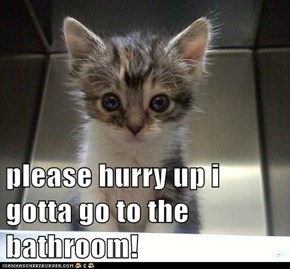 please hurry up i gotta go to the bathroom!