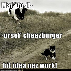 Mai 'do-it- -ursef' cheezburger  kit idea nez wurk!