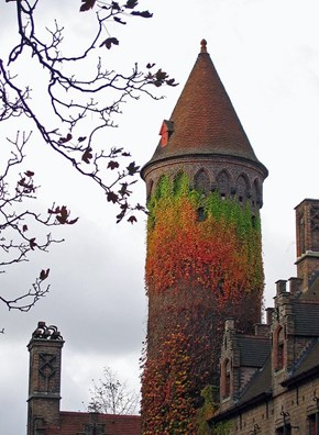 Ivy Tower in Bruges, Belgium Living Up To Its Name