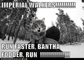 IMPERIAL WALKERS!!!!!!!!!!   RUN FASTER, BANTHA FODDER, RUN  !!!!!!!!!!!!!!!