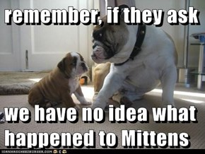 remember, if they ask  we have no idea what happened to Mittens