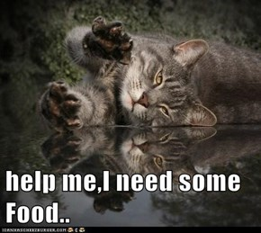 help me,I need some Food..