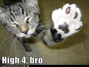 High 4, bro