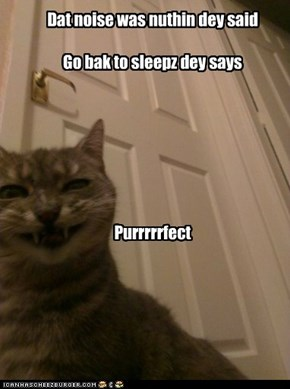 Dat noise was nuthin dey said Go bak to sleepz dey says       Purrrrrfect