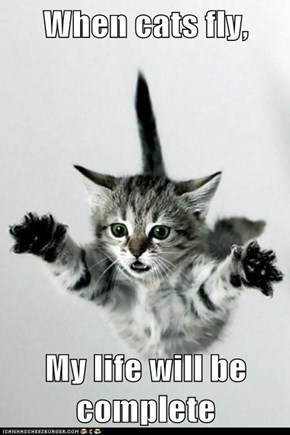When cats fly,  My life will be complete