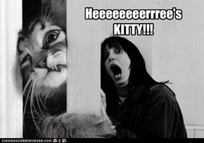 Heeeeeeeerrree's KITTY!!!