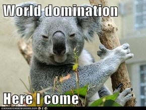 World domination  Here I come