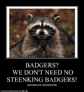 BADGERS?  WE DON'T NEED NO STEENKING BADGERS!