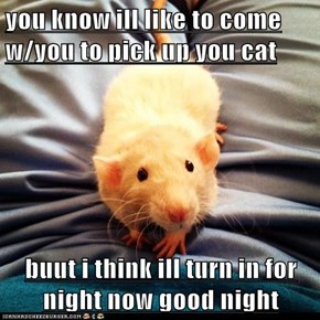 you know ill like to come w/you to pick up you cat  buut i think ill turn in for night now good night