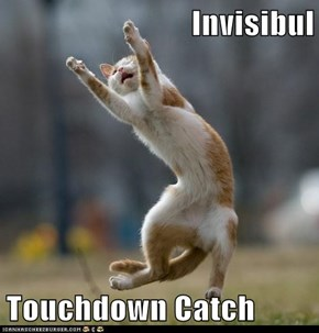 Invisibul  Touchdown Catch