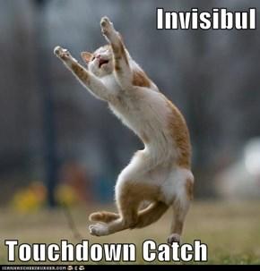 Invisibul  Touchdown Catch