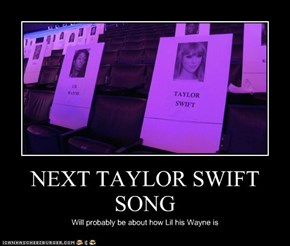NEXT TAYLOR SWIFT SONG