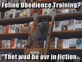 Feline Obedience Training?  Thet wud be ovr in fiction.