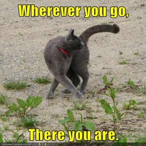 Wherever you go,  There you are.