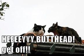 HEEEEYYY,BUTTHEAD! get off!!