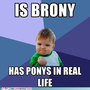 Son Why Is The Pony Spray Painted Yellow With A Pink Mane