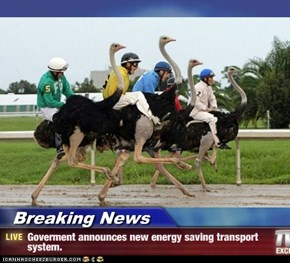 Breaking News - Goverment announces new energy saving transport system.